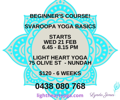 NEW BEGINNER'S CLASS - WED (1)